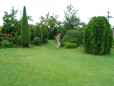 Saját kert